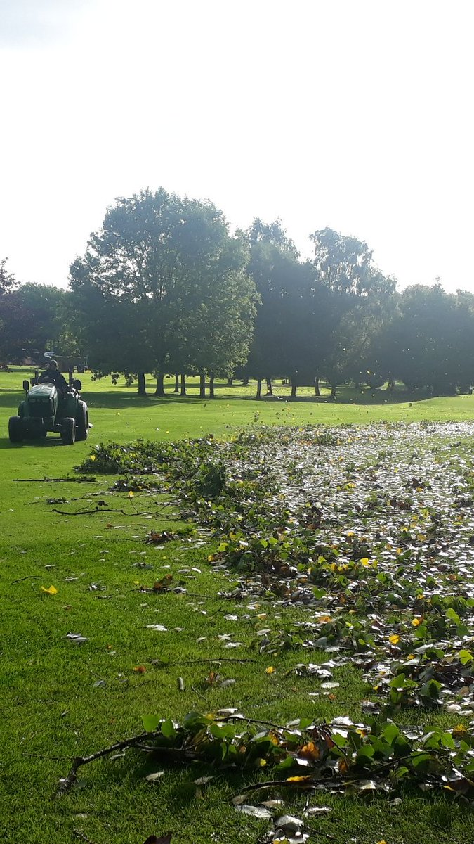 test Twitter Media - Friday.  Fantastic effort by the team today to clear the debris following the high winds last night.  Well done lads @IngestreParkGC  @IanDaviesEEEgol https://t.co/wwzRS6X95X