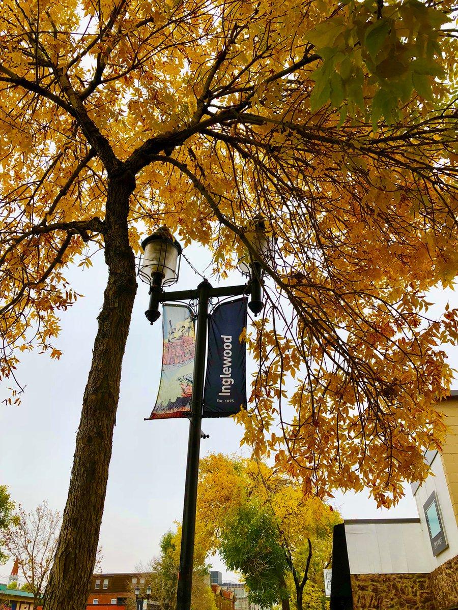 Fall #inInglewood! It's a beautiful time to shop our neighbourhood! #supportlocal #shoplocal #fall #walk https://t.co/Z8kSyXn3xi