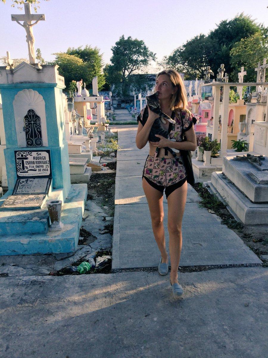 Christmas 2017 in Merida Mexico 🎊 gmipFBVhpH