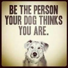 #vieravet #dogsaregreat #expectations https://t.co/wd9qwIxZ1F
