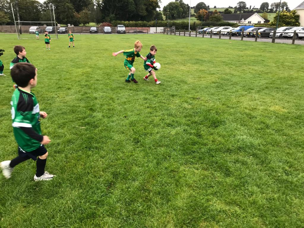 test Twitter Media - Rhode U'7s enjoyed a great game of football today against @FBMinorGAAClub Fr.Dowling Park. Many thanks to Ferbane/Belmont for travelling over and for making it an enjoyable day . 💚💛 https://t.co/G54vvmhaSv