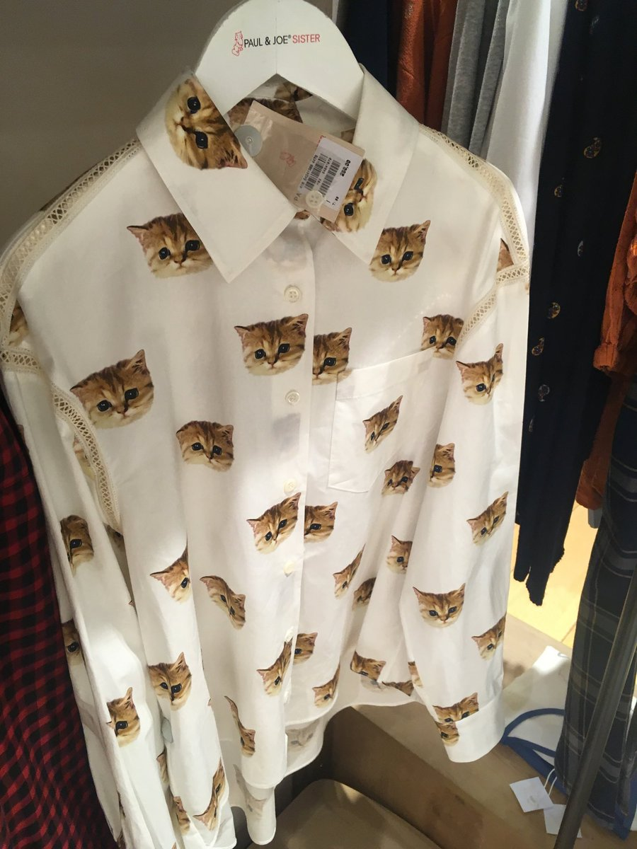 This shirt is for people who are ready to take there love of cats to the next level 🐱 G