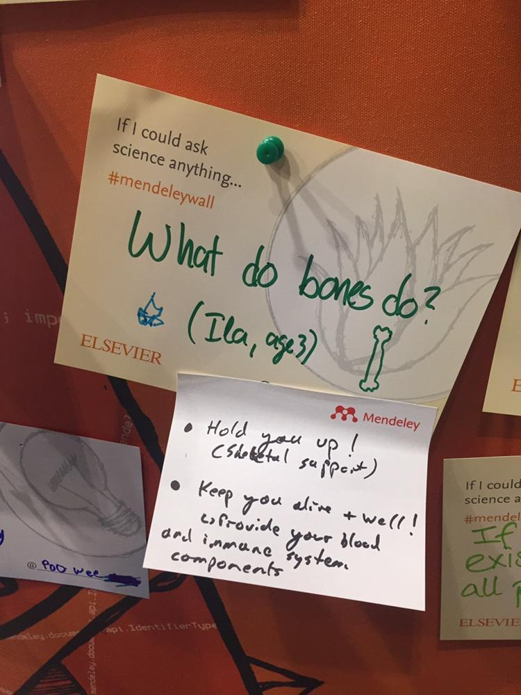 test Twitter Media - Hi Ila, here's a couple things bones do. We hope this answers your question on our #MendeleyWall #NSLive https://t.co/vcmaMH4YEj