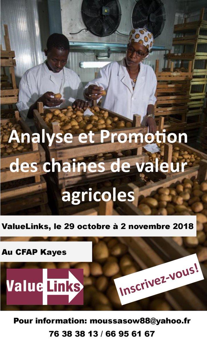 test Twitter Media - Inscrivez vous pour l'atelier ValueLinks: 'Analyse et Promotion des Chaines de Valeur' le 29 octobre - 2 novembre 2018 à Kayes! @agriculture @mali @innovation @agroforma https://t.co/ztW6B1fSHs