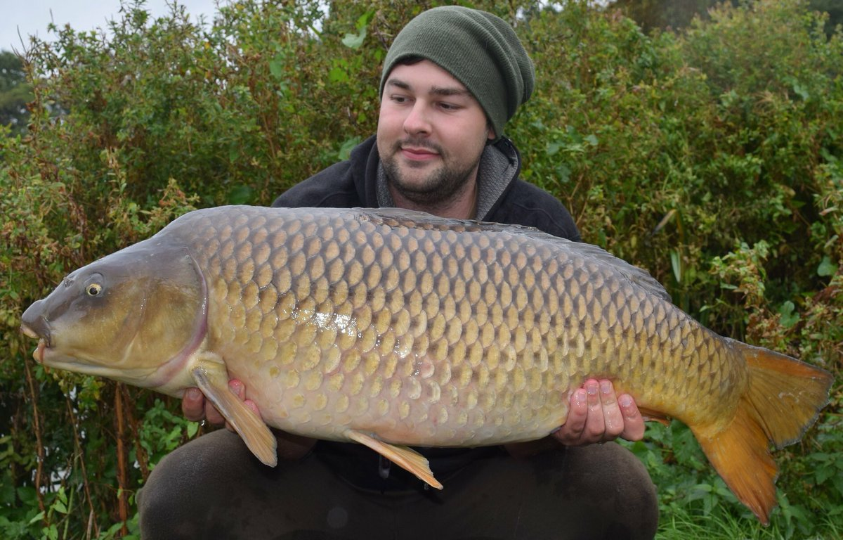 New PB 37lb 12oz still can't believe it !! #carpy #CARPFISHING #stickybaits #<b>Commoncarp</b> htt