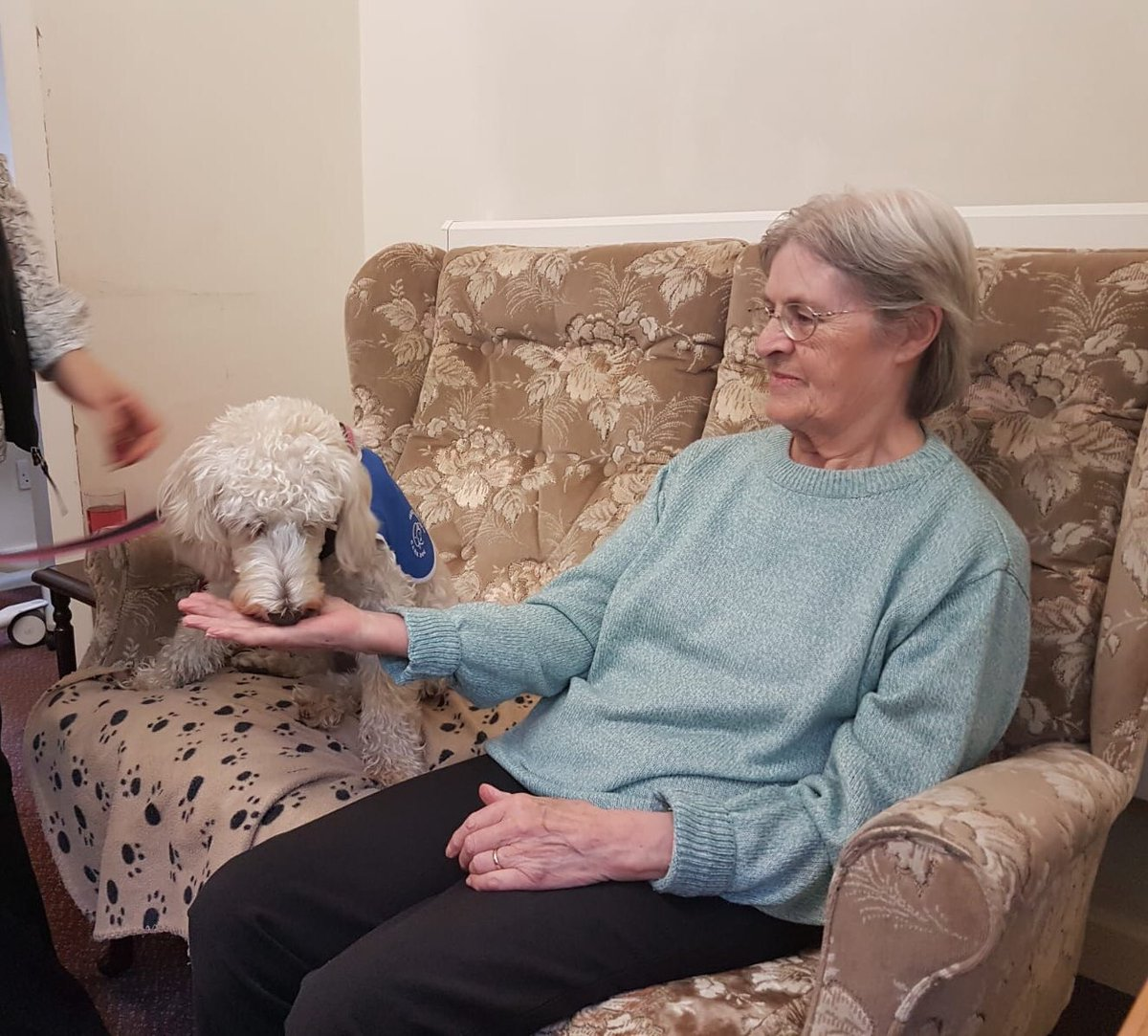 test Twitter Media - Daisy and Miss Parkes had their first visit today at Elizabeth House Residential Care home. Daisy is going to offer some regular support to the residents there. She certainly took a shine to Maureen. @willowsvets @Myhappydoguk @canineconcern1 @CanineConcern https://t.co/TMqwpptdOD