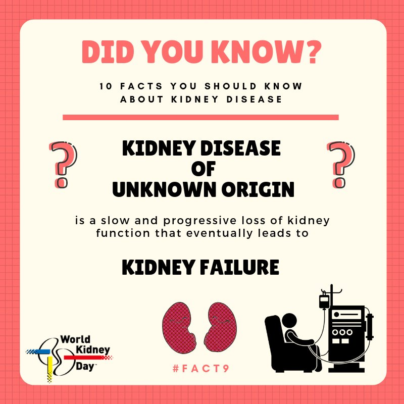 test Twitter Media - #ChronicKidneyDisease of unknown etiology (CKDu) is not associated with CKD typical risk factors such as #diabetes and #hypertension. CKDu usually remains #asymptomatic and until it presents as #EndStageKidneyDisease. . . #FridayFact #FridayMood #Health #Kidney @ncdalliance @WHO https://t.co/LbDXlGeWaQ