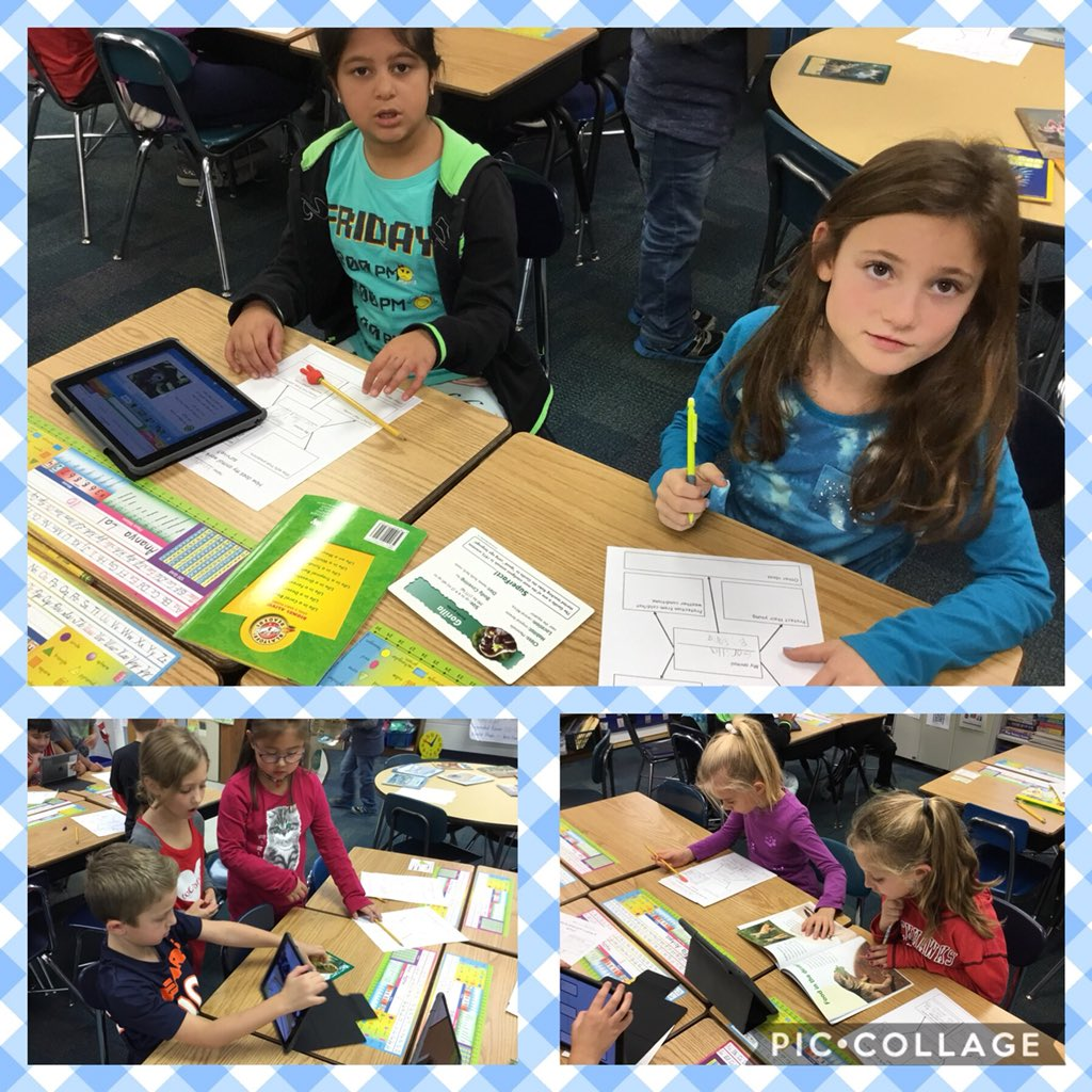 test Twitter Media - Learning how animals work in groups to survive.#d30learns https://t.co/lBVuuiw1RP