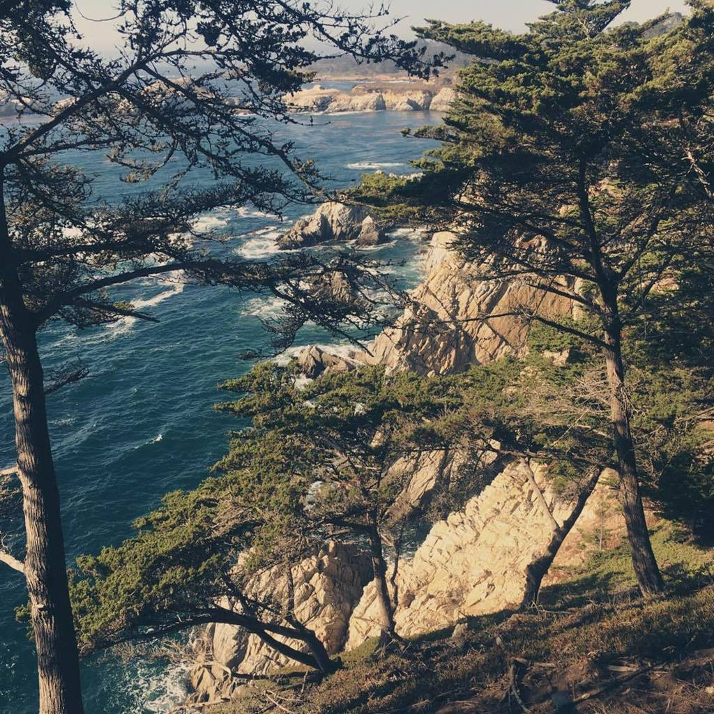 cliffs. #pointlobos #california #timewithdad https://t.co/2Gn6yUpMt5 https://t.co/didC8D8Zqt