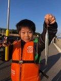 【釣果情報】衣浦各所で、依然サヨリが絶好調です。今朝の「知立店 堤防釣り体験教室」でも9歳の子が初チャレンジして25cmクラスをゲット♪ @知立店 https://t.co/L9NVdDQBkU