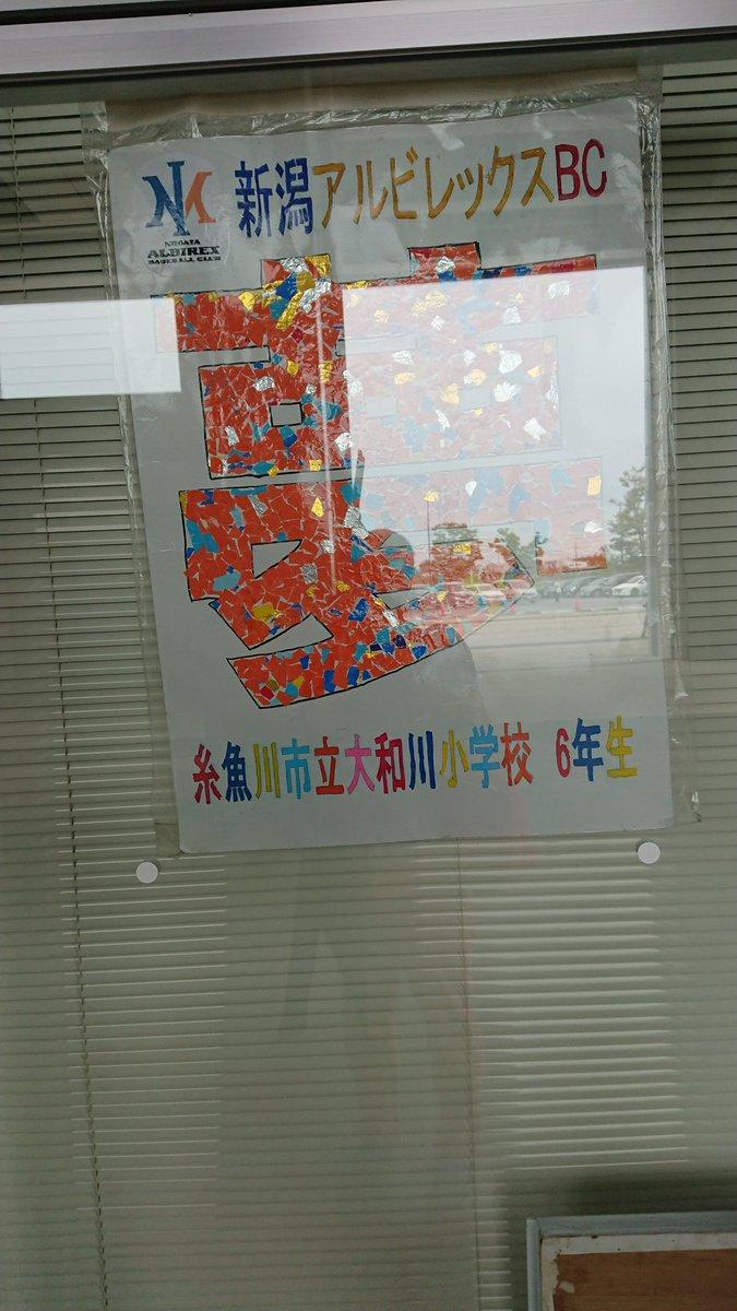 菜摘 高校 水島 糸魚川