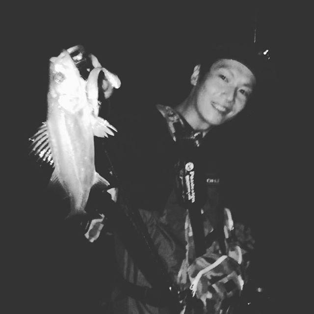 火曜のナイト  小さい(シーバス)秋見つけた! #シーバス釣り #ルアーフィッシング #シーバス #和歌山 https://t.co/boib5aIEGM https://t.co/uNB28DqsA4