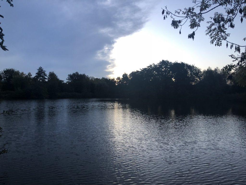 It was nice to wake up bankside this <b>Morning</b>! No carp so just a lake photo before work. #carp
