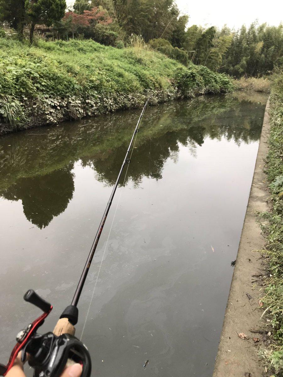 結局海に行けずに近くの沼でバス釣り… https://t.co/kUBrgoXEt5