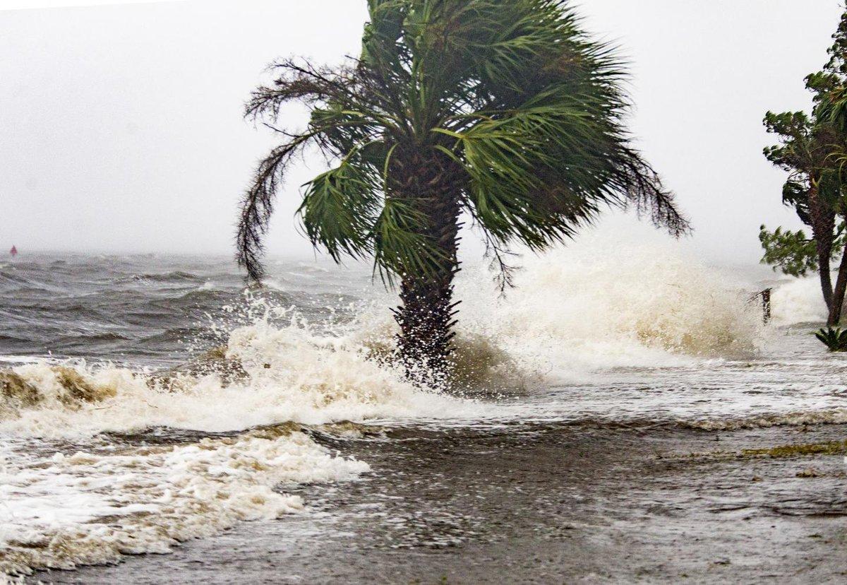 Hurricane Michael makes landfall, destroys homes, topples trees