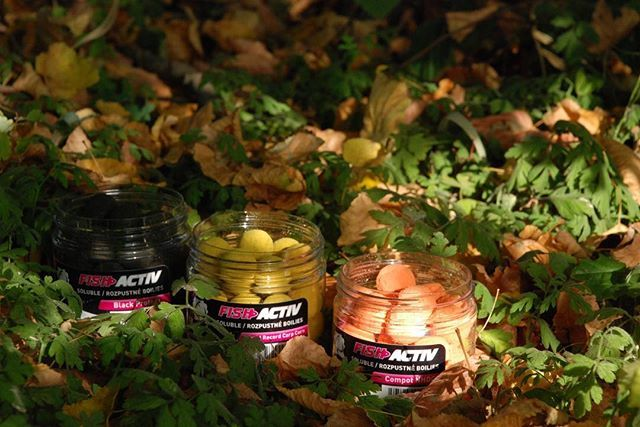 Autumn edge 👍 #<b>Lkbaits</b> #fishactiv #carpfishing #fishing #angling #karpfenangeln #angeln