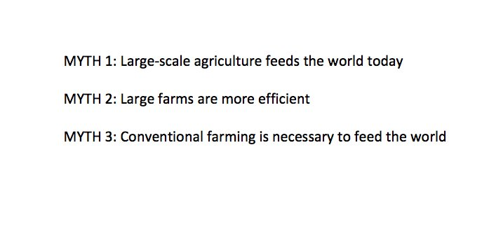 test Twitter Media - In honor of #NationalFarmersDay, here are 3 big myths about modern agriculture. Read more here: https://t.co/rkImxUbMHg https://t.co/Z8BS3HmlJJ