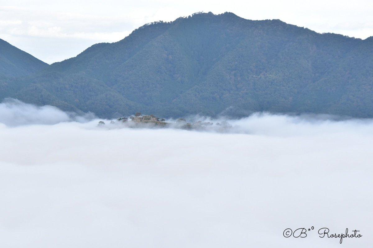 RT @Blue1222Rose: 天空の城… #竹田城 #兵庫県 #朝から登山 #雲海 #カメラ女子 #ファインダー越しの私の世界...