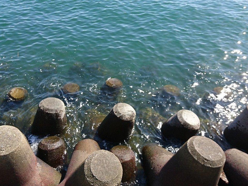 思っていたより綺麗な海 ボラの養魚が游いでいる 釣り人も数人居ますね。 ただし、釣れてる気配は無い。 https://t.co/hoxayKYZjJ