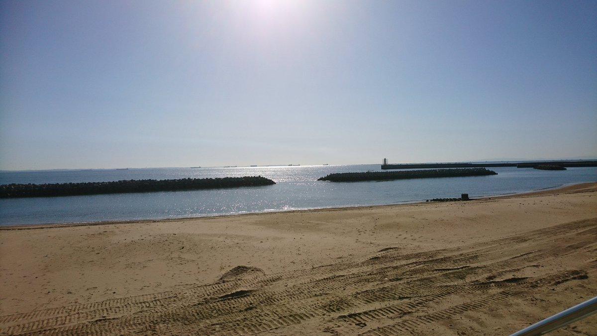 海を見てると釣りしたくなるな https://t.co/3K5OM7sLxP