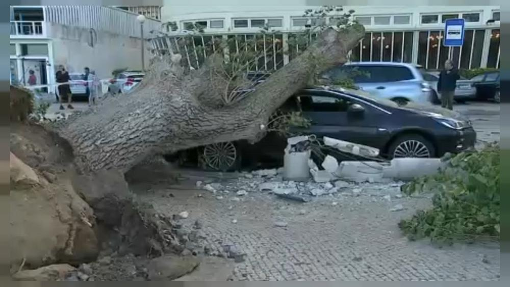 Hurricane-force winds batter Portugal