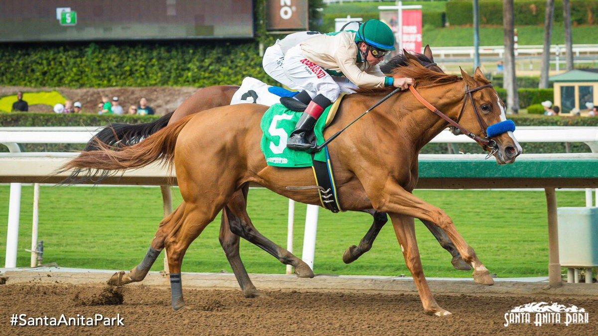 Chasing Yesterday and @DraydenV take the Anoakia Stakes for trainer Bob Baffert. #SantaAnitaPark https://t.co/h4g3klHxJ5