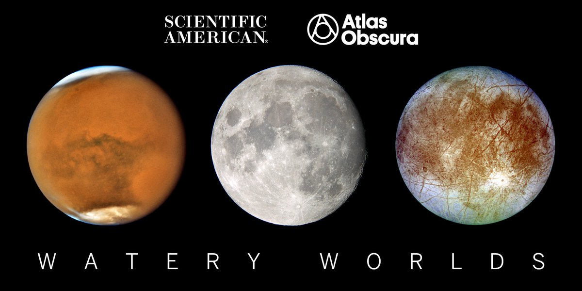 test Twitter Media - Where there's water on Earth, there's life. Is this true for other worlds?  Join us in Brooklyn on October 25 for a night of stargazing and celestial debate. Our expert panel will explore one of the universe's biggest mysteries: Are we alone? https://t.co/2yBuCcVwm5 https://t.co/kUprLGergO