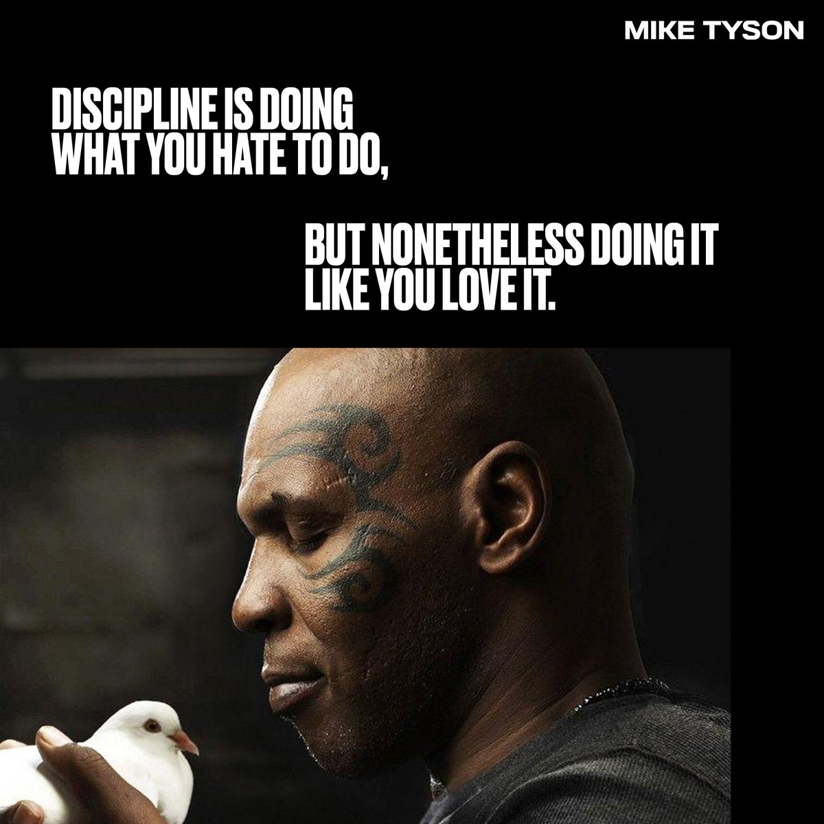 Discipline is doing what you hate to do, but nonetheless doing it like you love it. #miketyson https://t.co/zCih79COZE
