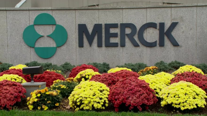 test Twitter Media - Merck ditches biosimilar Lantus, but will that ease the path for Mylan's rival insulinproduct? https://t.co/xi3sUmGci0 https://t.co/lE9sbnw6Ds