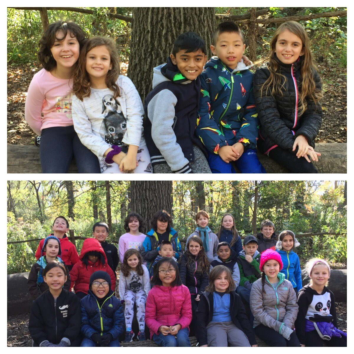 test Twitter Media - We had a memorable day on our field trip at The Grove! #d30learns https://t.co/7pIoHXYwUp