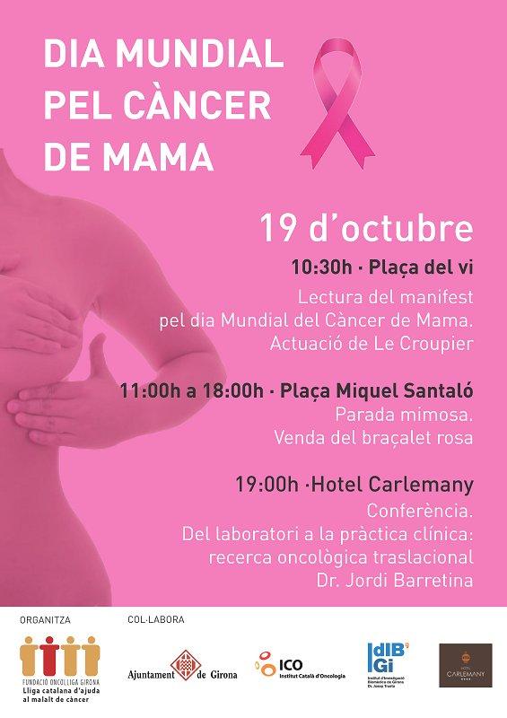 test Twitter Media - Demà és el Dia Mundial pel Càncer de Mama. Consulta les activitats que organitza l'Oncolliga a Girona! @OncolligaGi https://t.co/TM1TqLyNVp