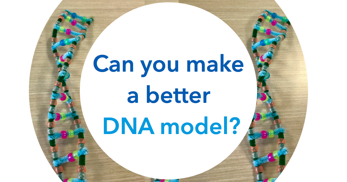 test Twitter Media - Need a break at #ASHG18? Join us at stand 1117 and make your very own DNA model. #getcrafty #ASHG2018 https://t.co/0cwSftqYkd