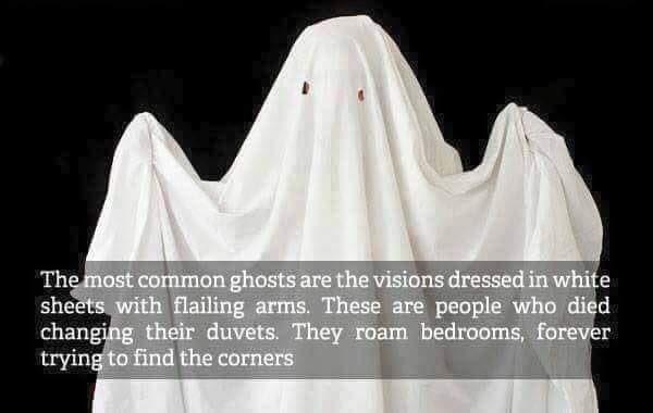 Halloween: the truth. https://t.co/pI1sBddQdu