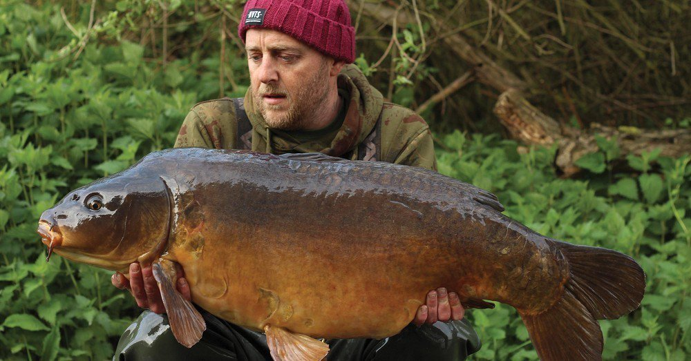 Does the moon really influence key carp captures?  asks @<b>Carpology</b> https://t.co/Uwqb9ydXnG #c