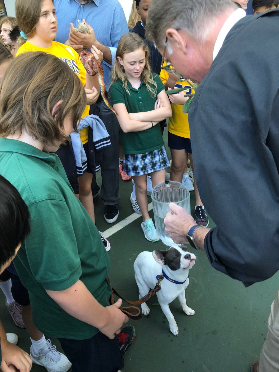 Bandit is being blessed at the kids school. Look at his lovely response. #BanditStone https://t.co/J7XQy0p9xS