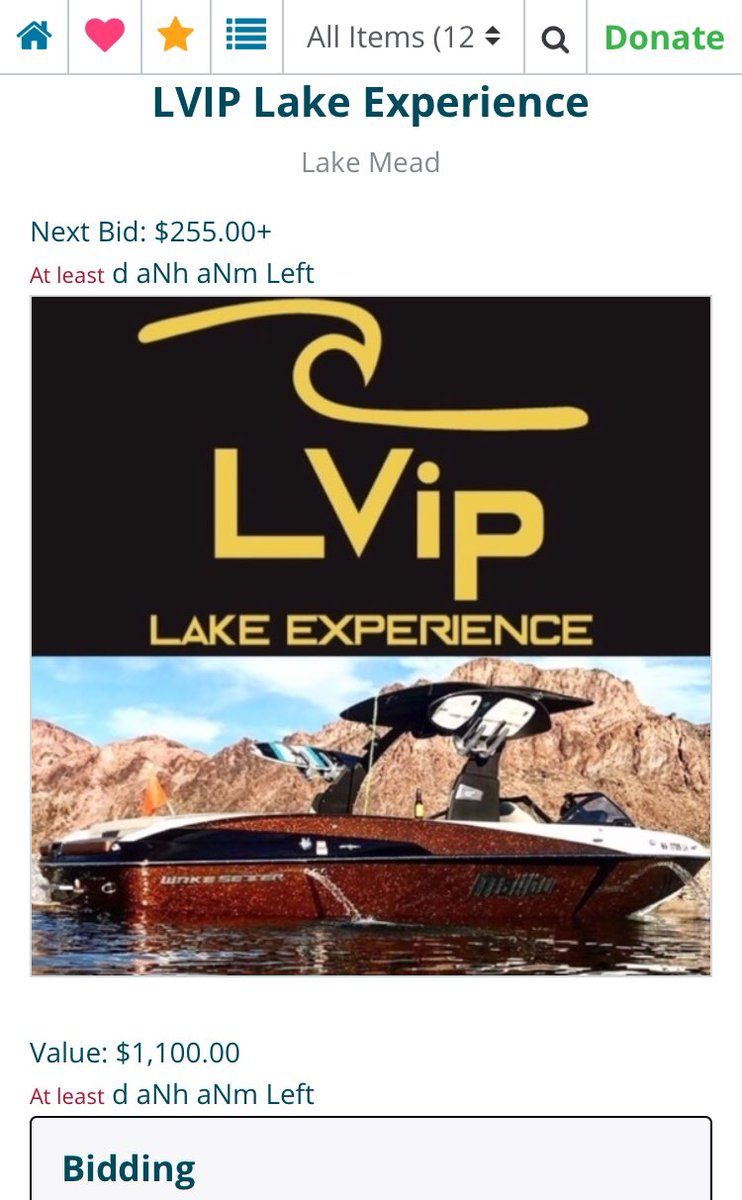 30 minutes left to #bidforacause! The #LVIP Lake Experiece still up for a STEAL!! https://t.co/McYYPczY0o https://t.co/CYJ65mBFJt