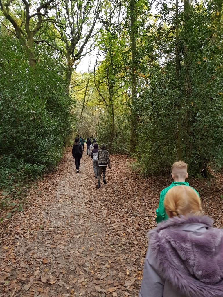 test Twitter Media - While the rest of year 6 are in Oxford, the remaining year 6 children have headed down to the woods for some den building. https://t.co/8PLRzC2ORe