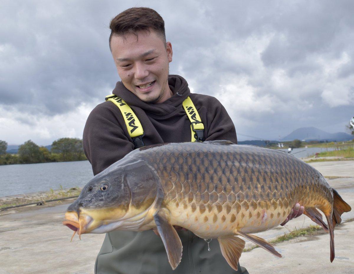 13.2kg! #carpfishing  #carp<b>Road</b>  #カープフィッシング  #鯉釣り https://t.co/CEM2