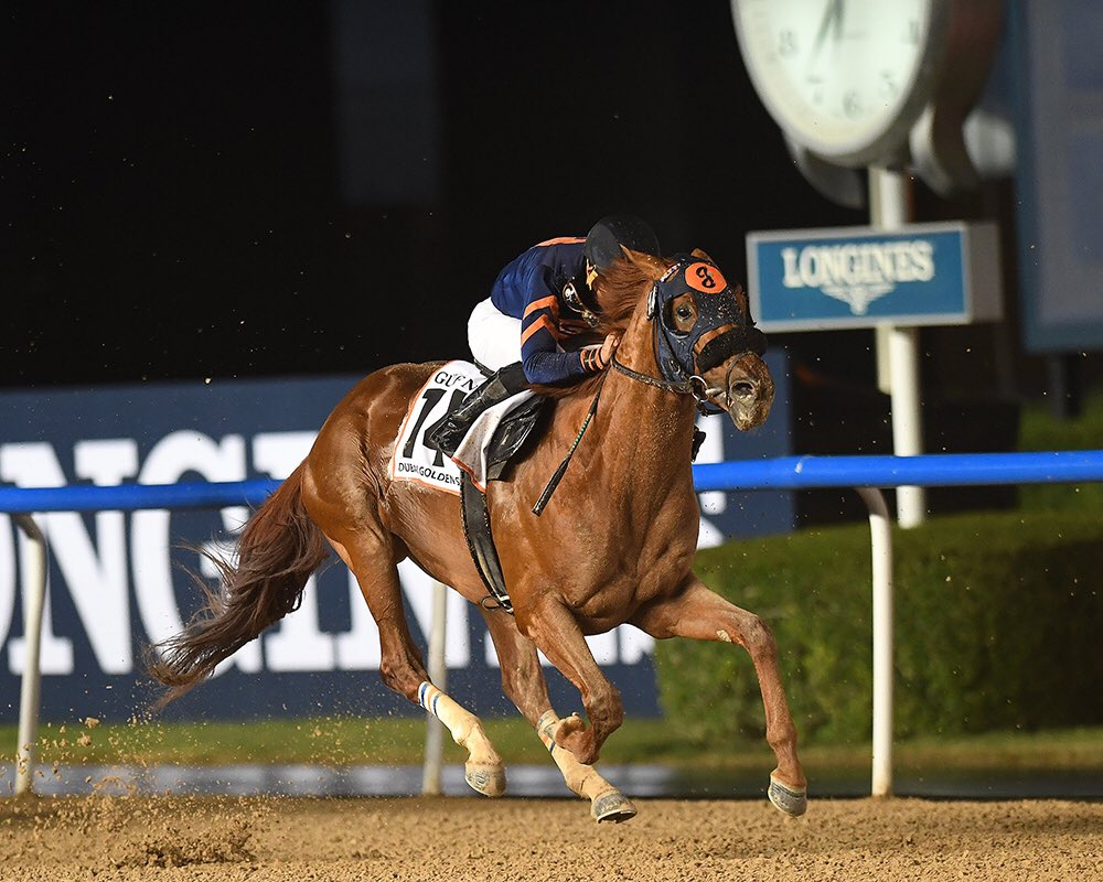 test Twitter Media - Hard to believe the Mind Your Biscuits era has come to a close. $4.2M, 3 G1 Wins, so many memories. Thanks to @CSummersRacing for all he did & great partners @vandalaje @DanSummers12. Sol Kumin, @ColonelKisber @zkisber @chsande & myself sure enjoyed this ride! #richestnybredever https://t.co/ZCxqP4u2Td