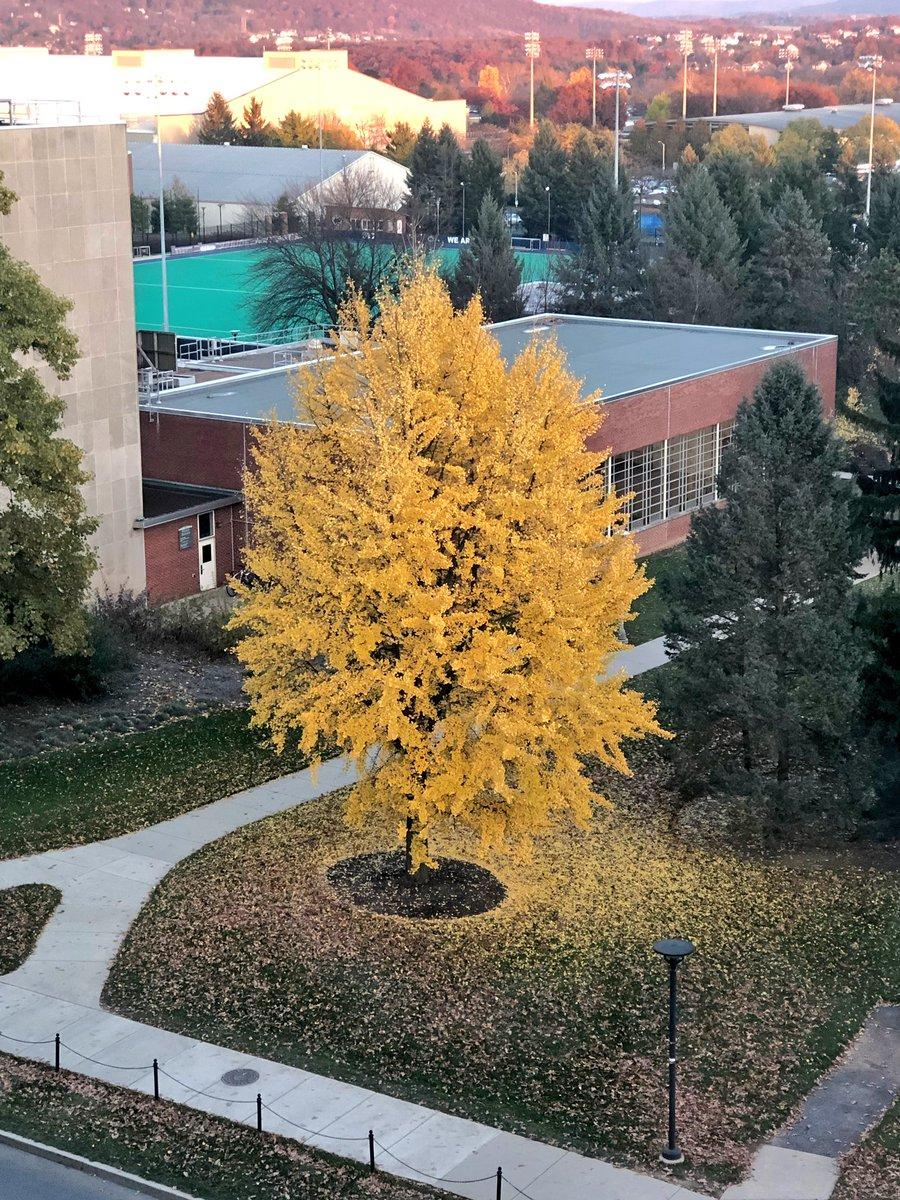 RT @erin_hogge: Taken 20 hours apart—fall is in full swing! @penn_state https://t.co/91cAFeEHXO
