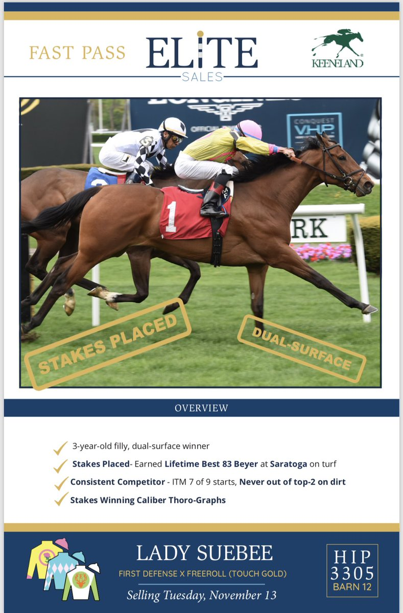 test Twitter Media - 4 through the ring on racehorse day @keenelandsales and 4 sold, leading all consignors in average of $137,500 and selling the 2nd highest priced Hip in SP Lady Suebee. Thanks once again to buyers for trusting @EliteRaceSales and our terrific team @katelyngeorgina @Hobdy_Buchanon https://t.co/kLBvEYas37