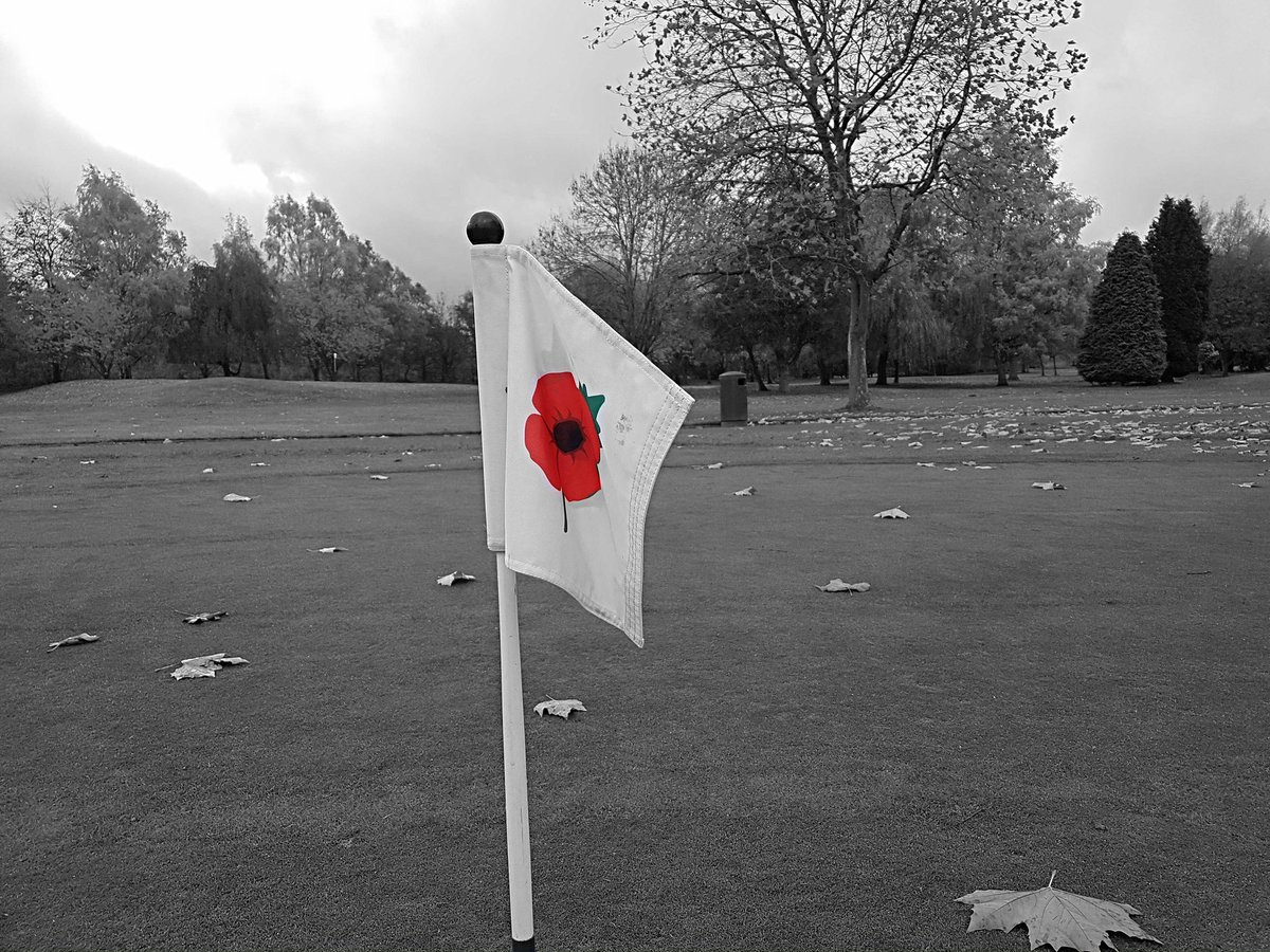 test Twitter Media - May we never forget. 100 years ❤ #RememberanceDay #remember #war #100years #poppy #PoppyAppeal #soldier #fallen #greens #golf #golfcourse #golfhole #flag #golflife #golferlife #ingestre #ingestreparkgc #WeRemember #LestWeForget  @IPGCourseupdate https://t.co/gkYChd7IO1