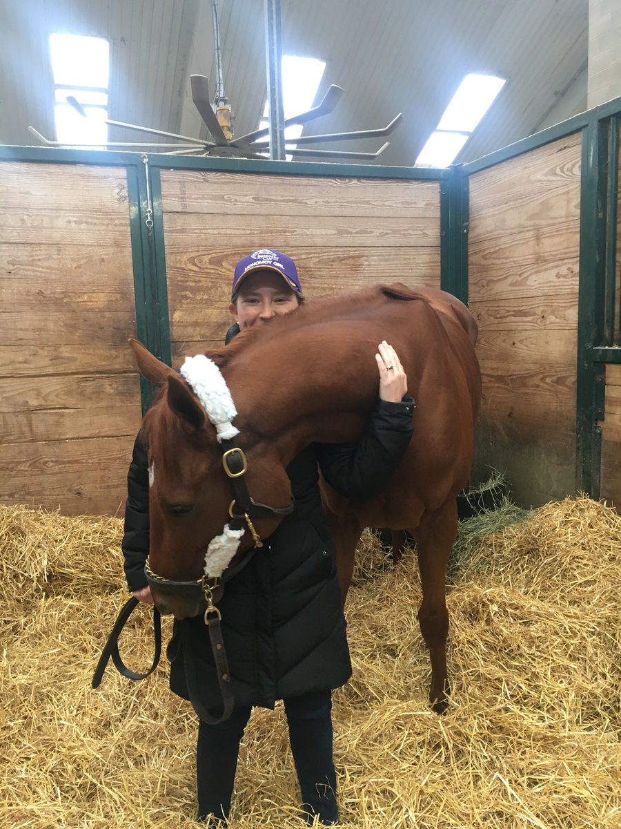 test Twitter Media - Monomoy Girl is settled in @WinStarFarm before heading south for @paulmsharp farm where she was broken as a 2yo. She enters her vacation in perfect condition thanks to @bradcoxracing but has very much earned some ☀️🏖 & rest. 5 G1W's including KY Oaks & @BreedersCup what a dream! https://t.co/WQwHyUCxdE