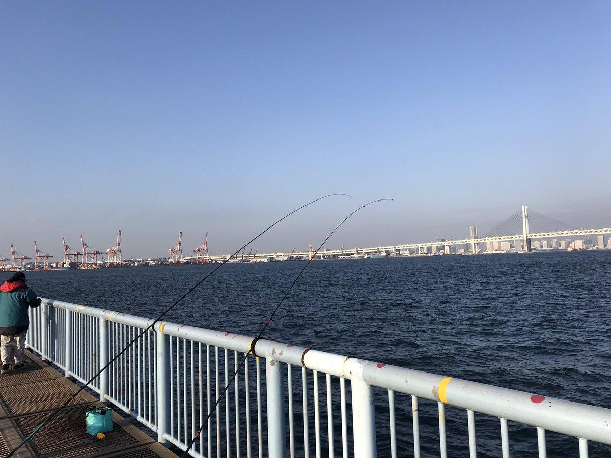 今日はじめての海釣り公園だぁ^_^ 何が釣れるか楽しみ^_^ https://t.co/ws0vopTOVC
