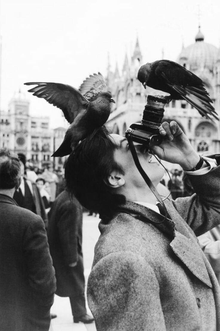 Happy birthday Alain Delon.