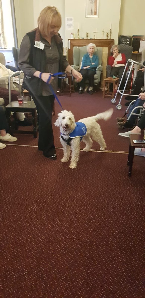 test Twitter Media - Daisy meeting lots of new friends at Elizabeth House Residential Care Home today. @willowsvets @Myhappydoguk @canineconcern1 @CanineConcern https://t.co/pkwZmcNQuw