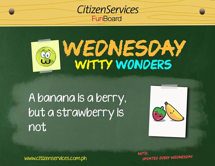#WittyWonder: A banana is a berry, but a strawberry is not. https://t.co/l6DAiAM1GJ #citizenservices #trivia https://t.co/MFcL6mABUy