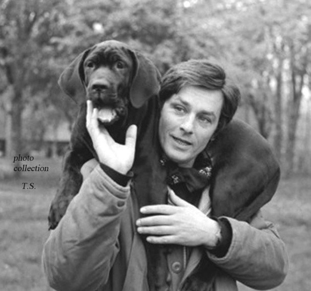 Happy Birthday to the indelible beautiful & beguiling Alain Delon