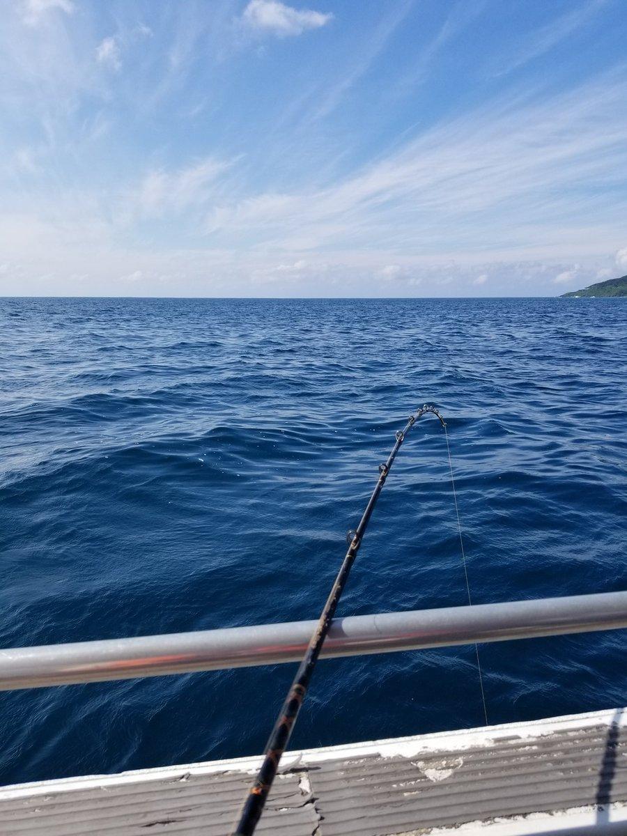 海釣りじゃー!!クジラつんどー!! https://t.co/8grujnI8L3