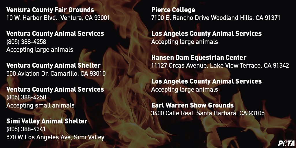 RT @peta: PLEASE RETWEET! Here is vital information on places accepting animals from #WoosleyFire. #CaliforniaFires https://t.co/XUEFLeBPrM